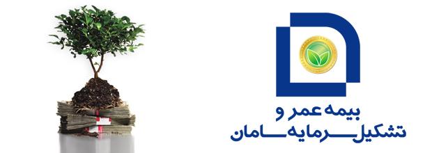 بیمه عمر و تشکیل سرمایه بیمه سامان ۱۳۹۵