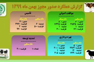 گزارش عملکرد صدور مجوز دام بهمن ۹۹
